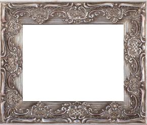 Frame (46)